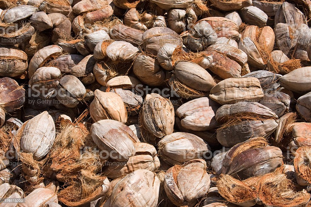 coconut husks royalty-free stock photo