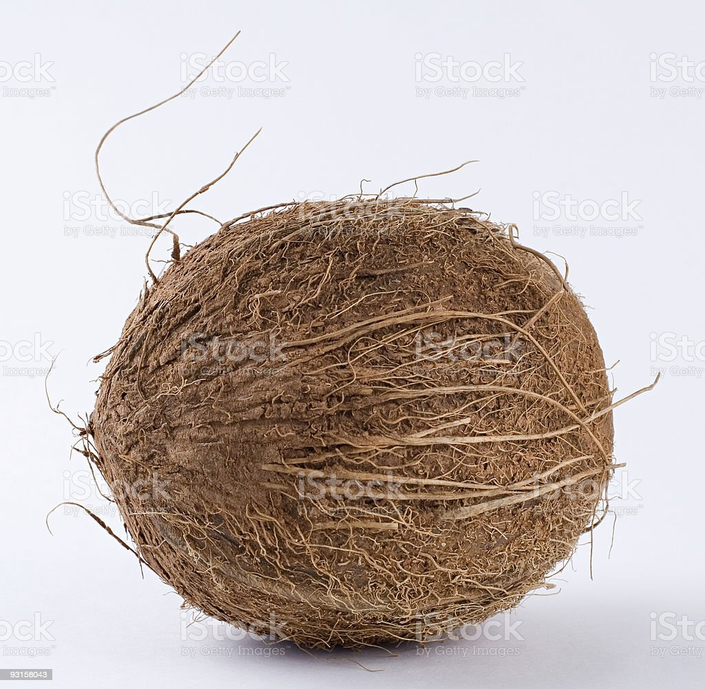 Coconut in detail royalty-free stock photo