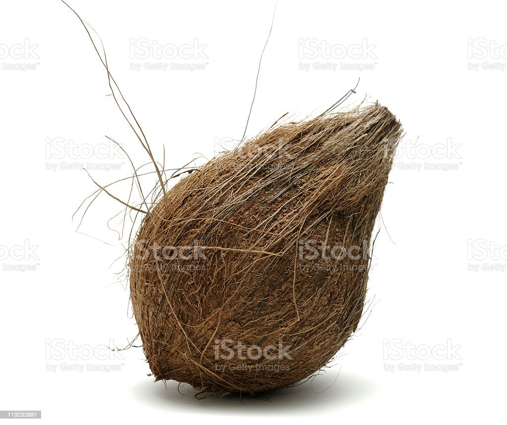 coconut isolated against a white background royalty-free stock photo