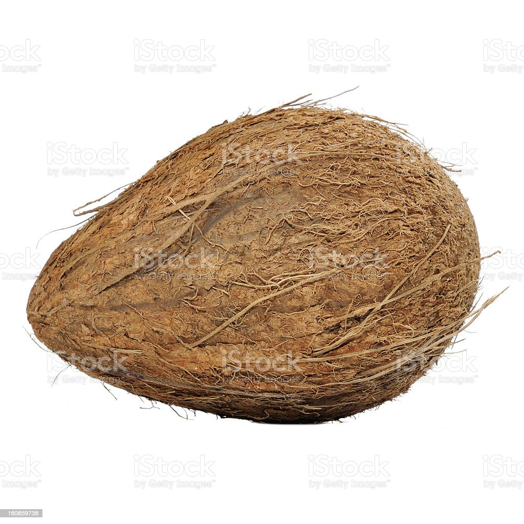 Coconut Isolated on White Background royalty-free stock photo