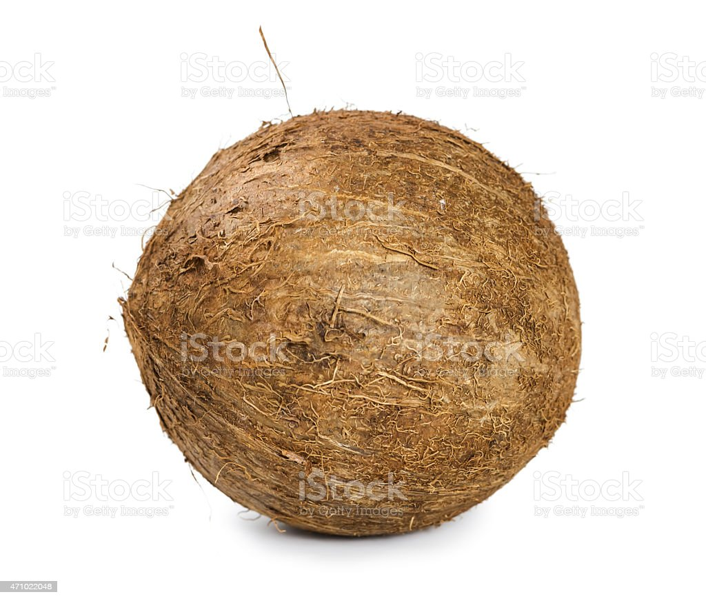 Coconut isolated on white background stock photo