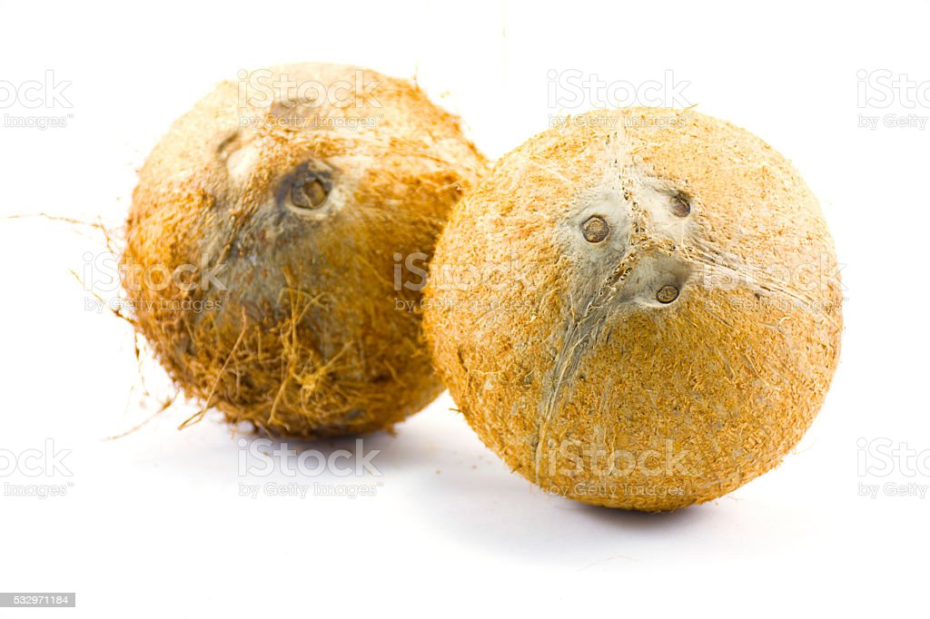 Coconut isolated.On white background.center stock photo