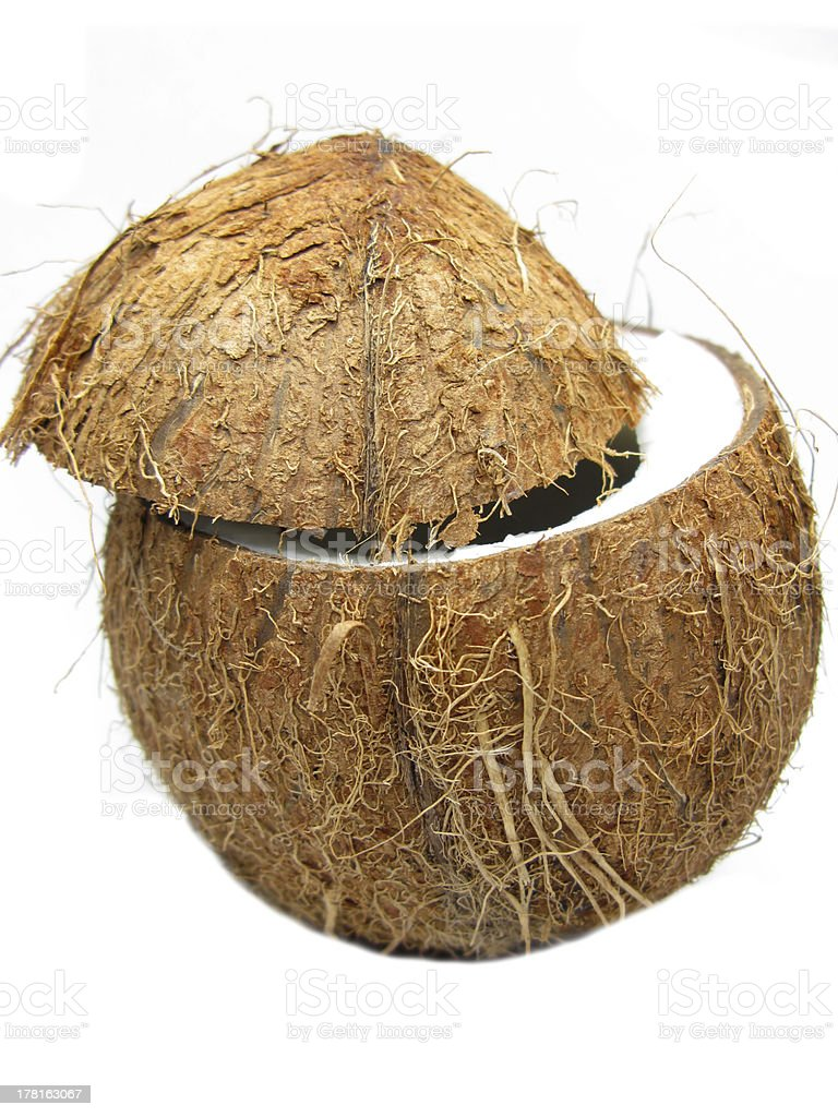coconut nut isolated royalty-free stock photo