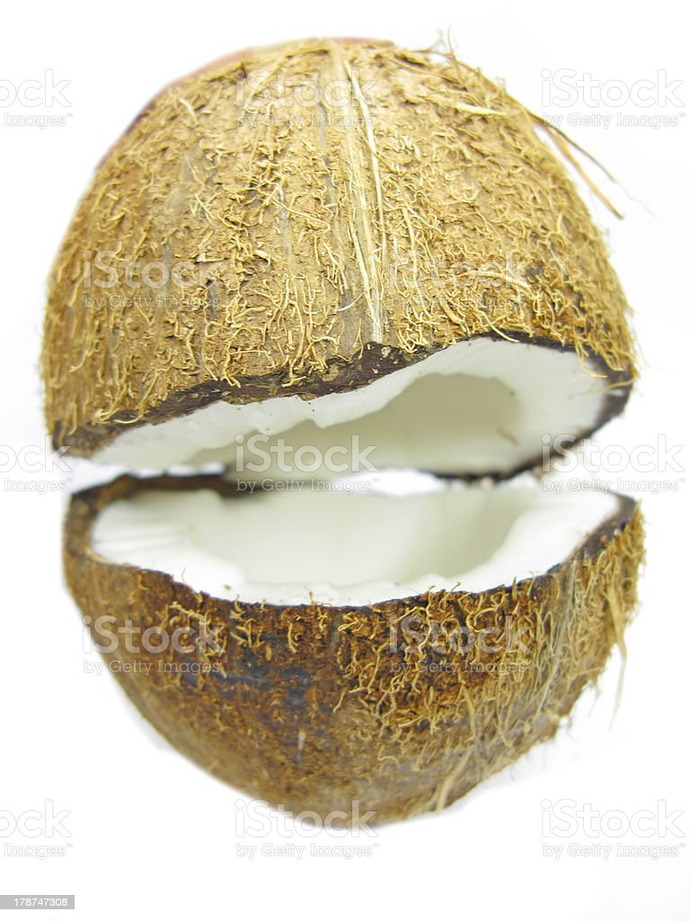 coconut nut isolated royalty-free stock photo