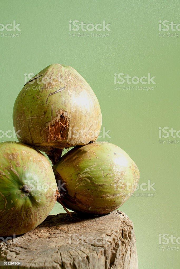coconut on log stock photo
