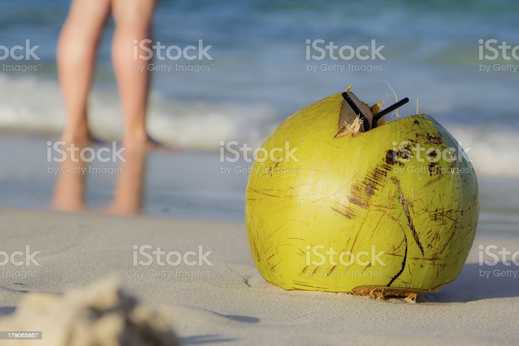 Coconut on the beach royalty-free stock photo