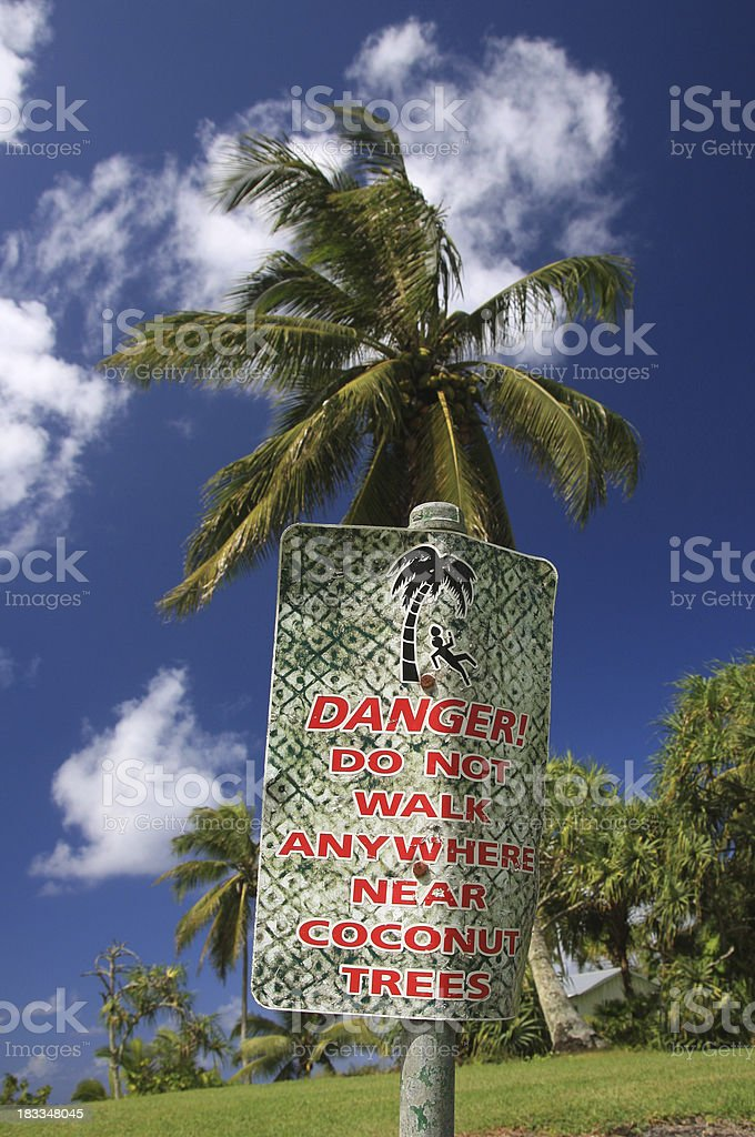 Coconut palm tree warning sign on Maui Hawaii stock photo