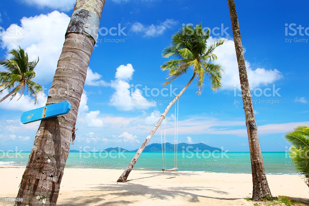 Coconut palms on the beach in Thailand royalty-free stock photo