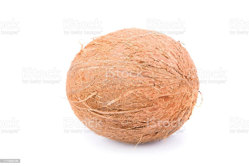 Coconut stock photo