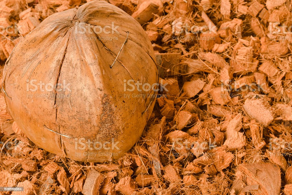 Coconut shell and coconut spathe fiber for agricultural stock photo