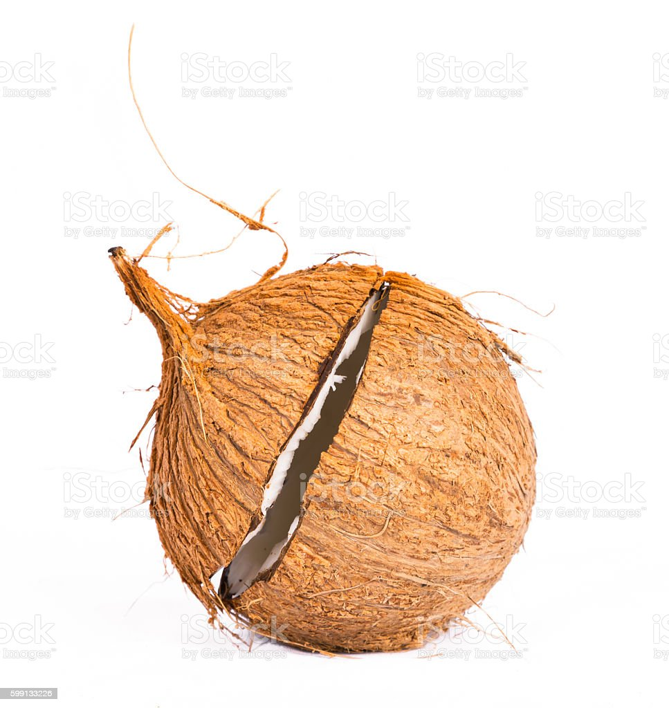 Coconut shell casing stock photo