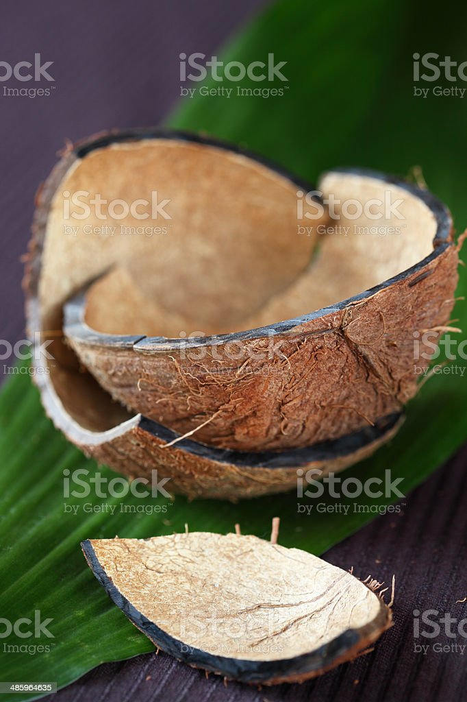 Coconut Shell on a big green leaf stock photo
