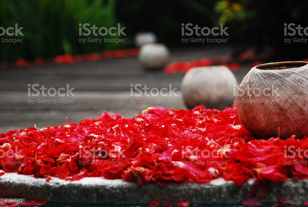 Coconut Shell on Scattered Flowers. stock photo