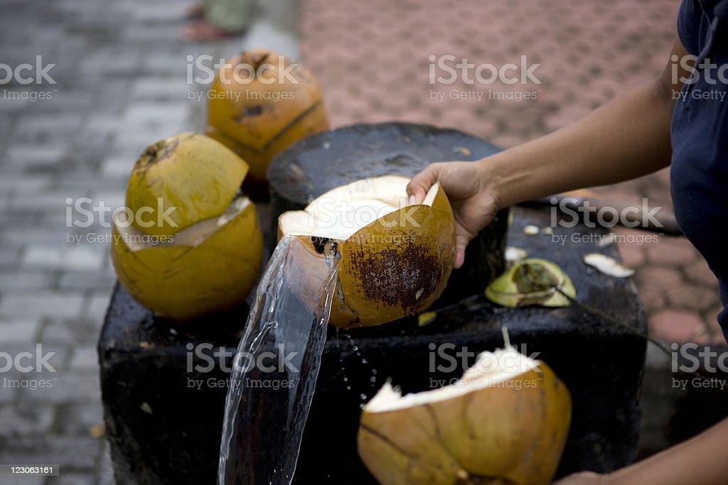 Coconut shell royalty-free stock photo