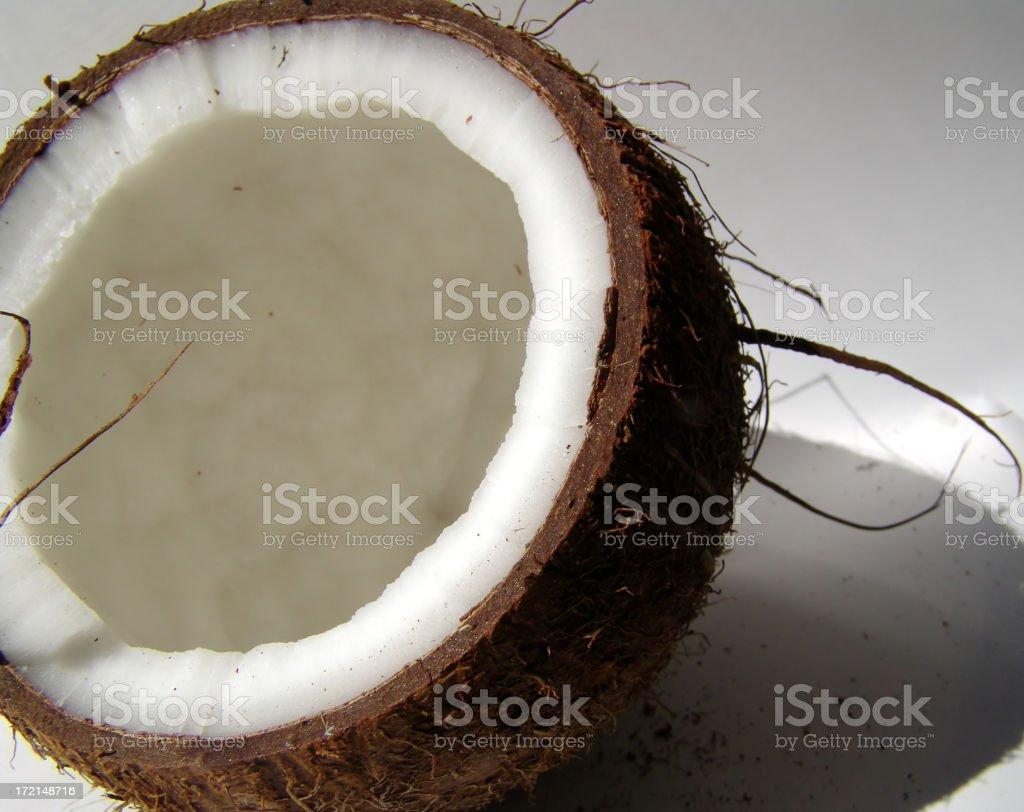 Coconut study royalty-free stock photo