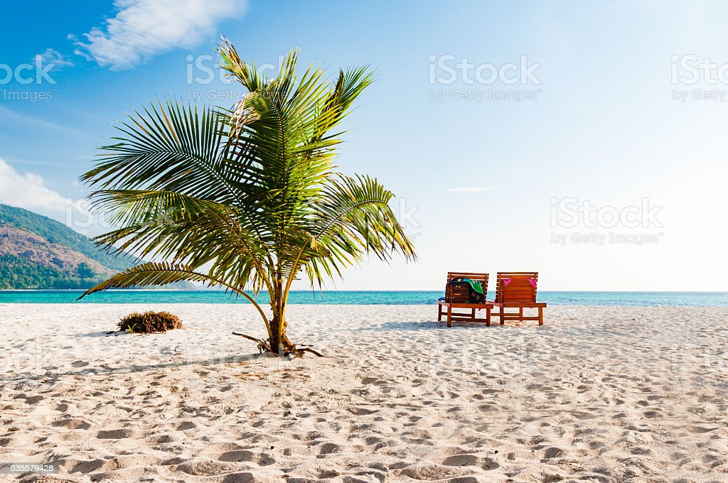 Coconut tree and 2 beach chair in a sunny day stock photo