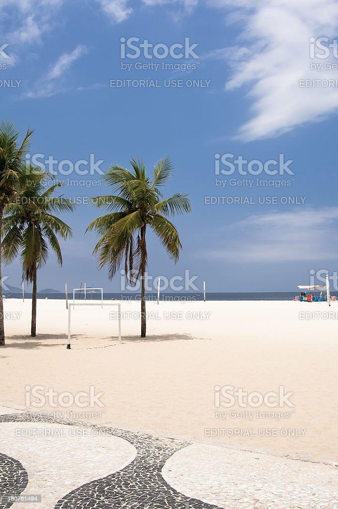 Coconut Trees on Copacabana, Rio de Janeiro, Brazil, South America. stock photo