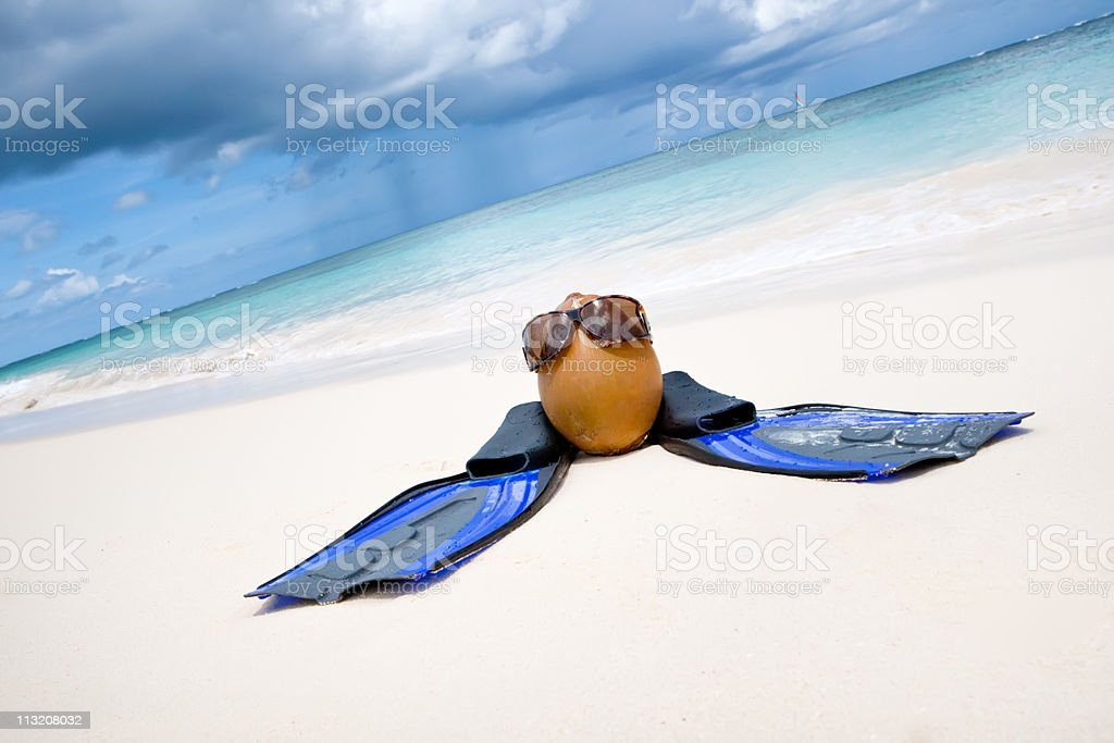 Coconut with black sunglasses and blue flippers stock photo