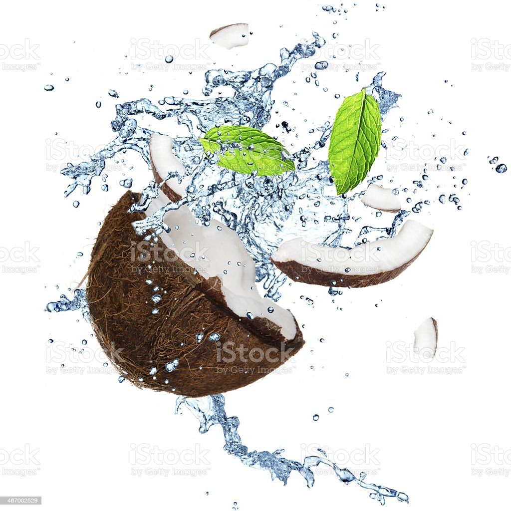 Coconut with splashing water stock photo