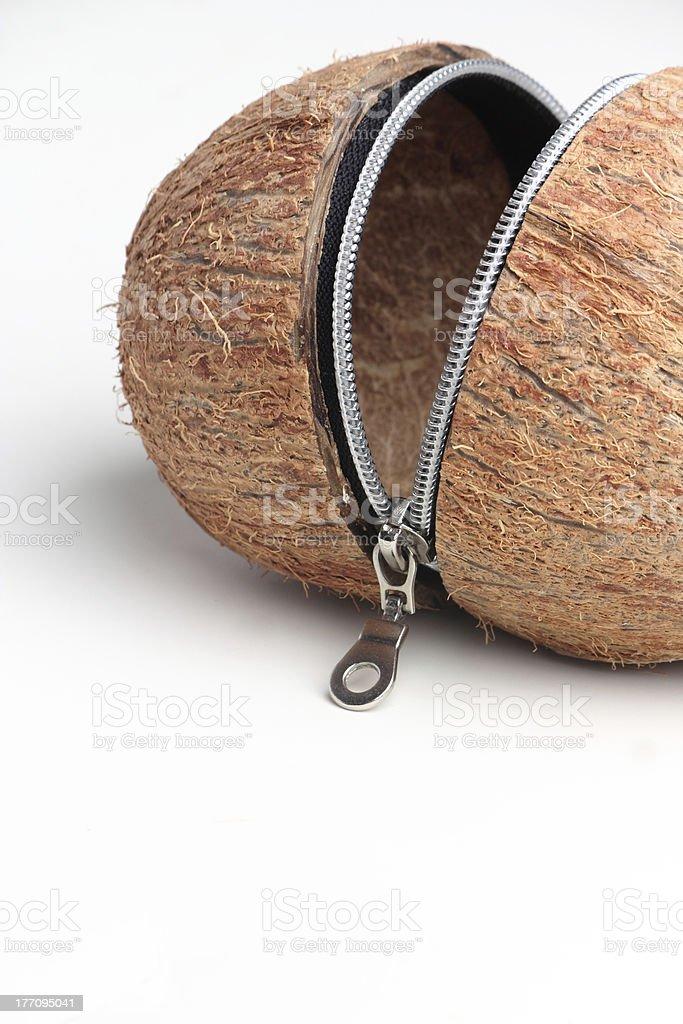 Coconut with zipper stock photo