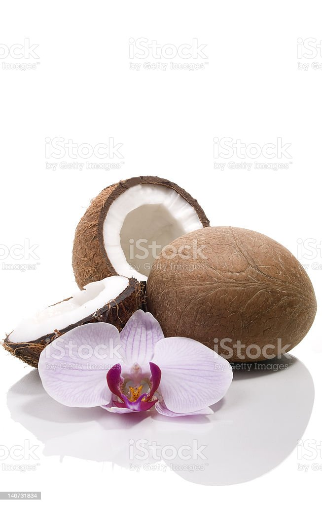 Coconuts and orchid royalty-free stock photo