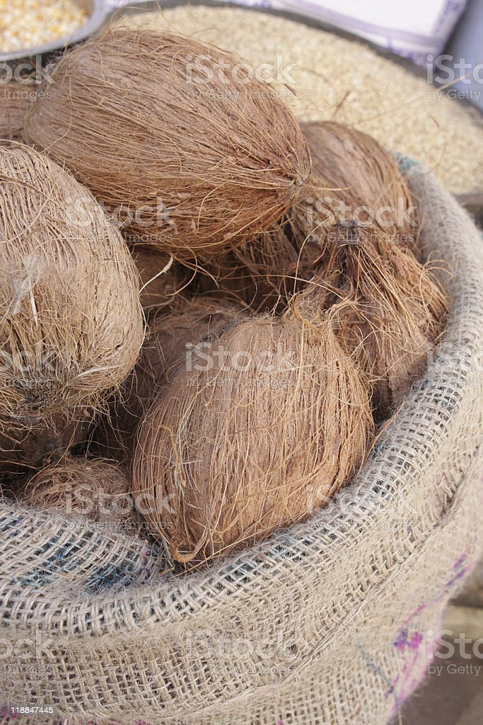 Coconuts royalty-free stock photo