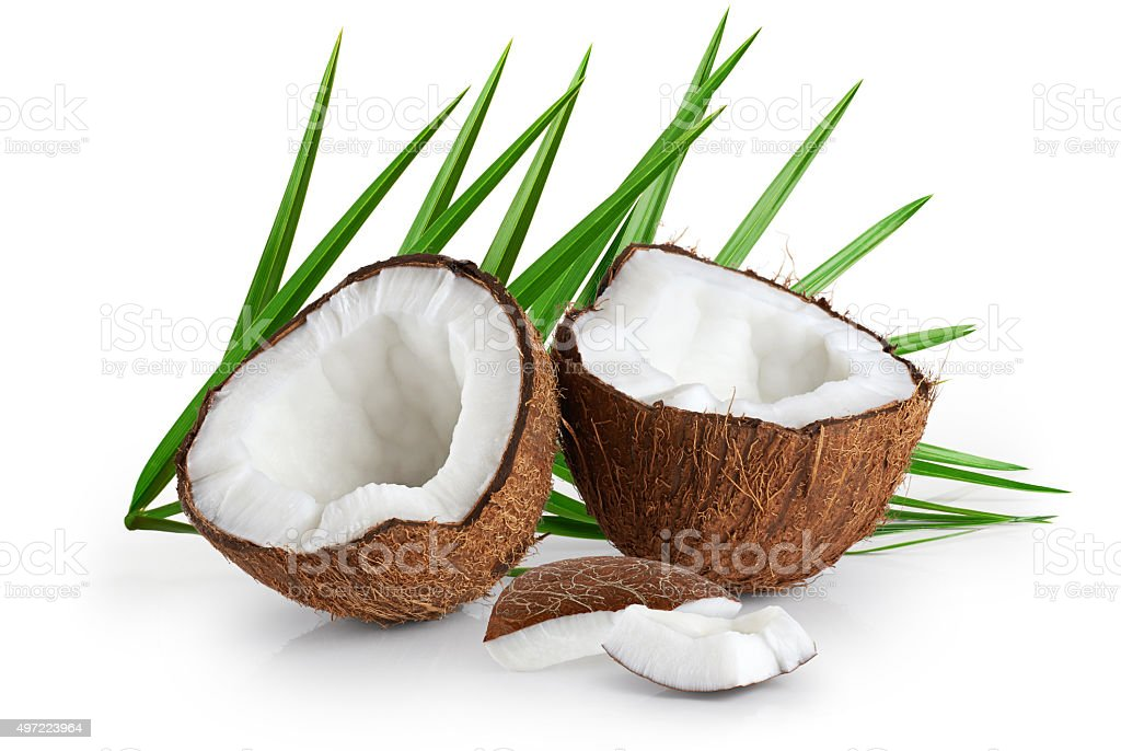 Coconuts with leaves on a white background. stock photo