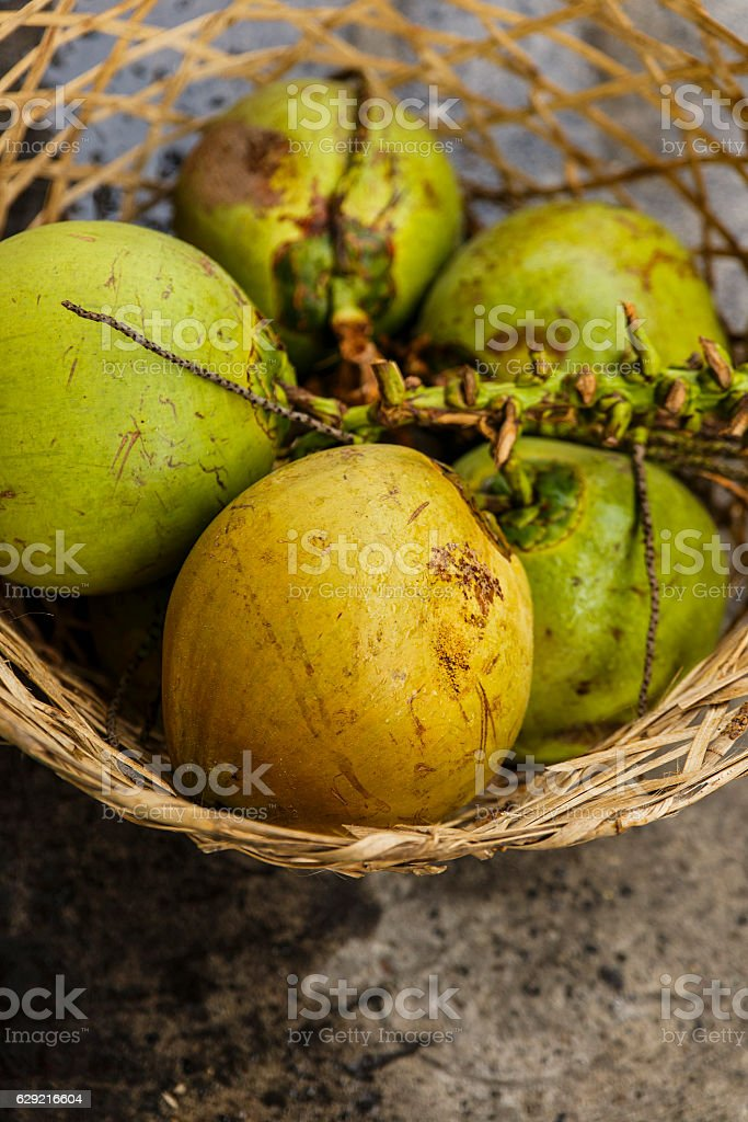 coconuts-dumaguete stock photo