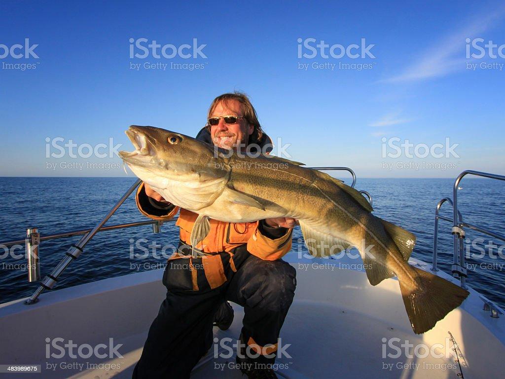 cod  fishing stock photo