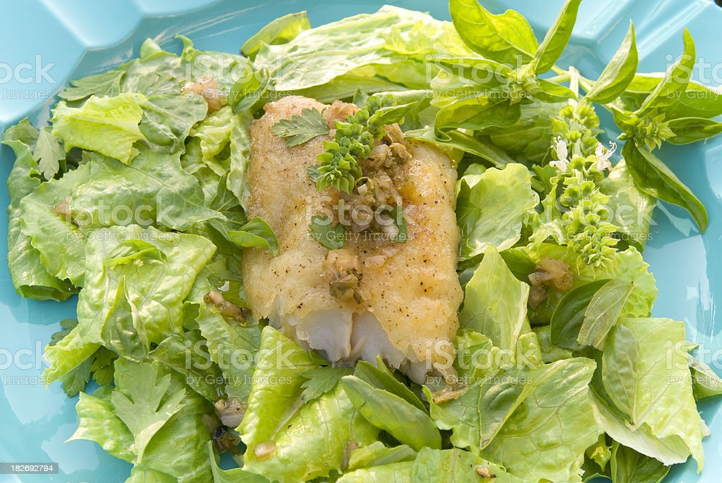 Cod Fried Fish Fillet on Romaine Lettuce & Fresh Herbs Salad royalty-free stock photo