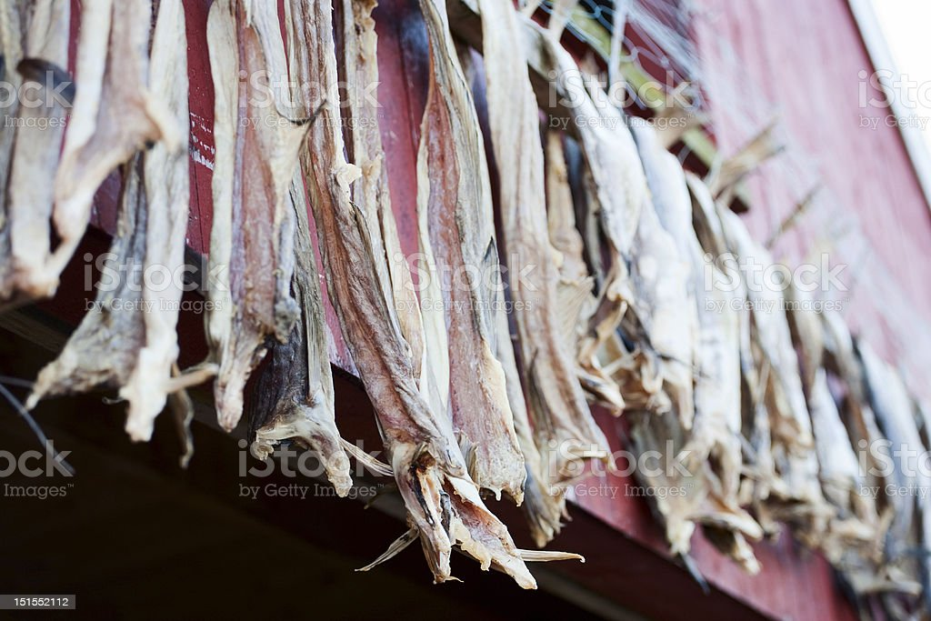 Cod stockfish royalty-free stock photo
