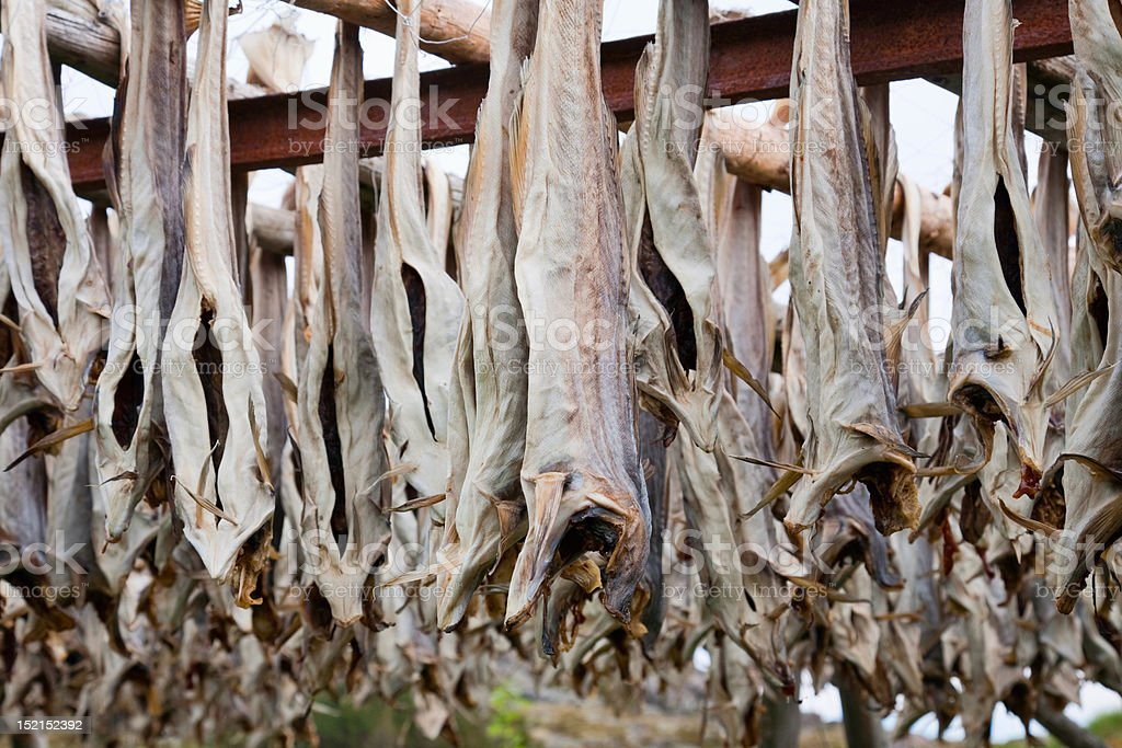 Cod stockfish royalty-free stock photo