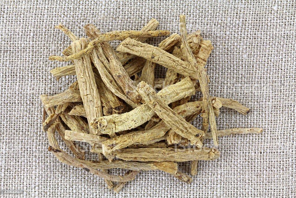Codonopsis pilosula, Radix stock photo