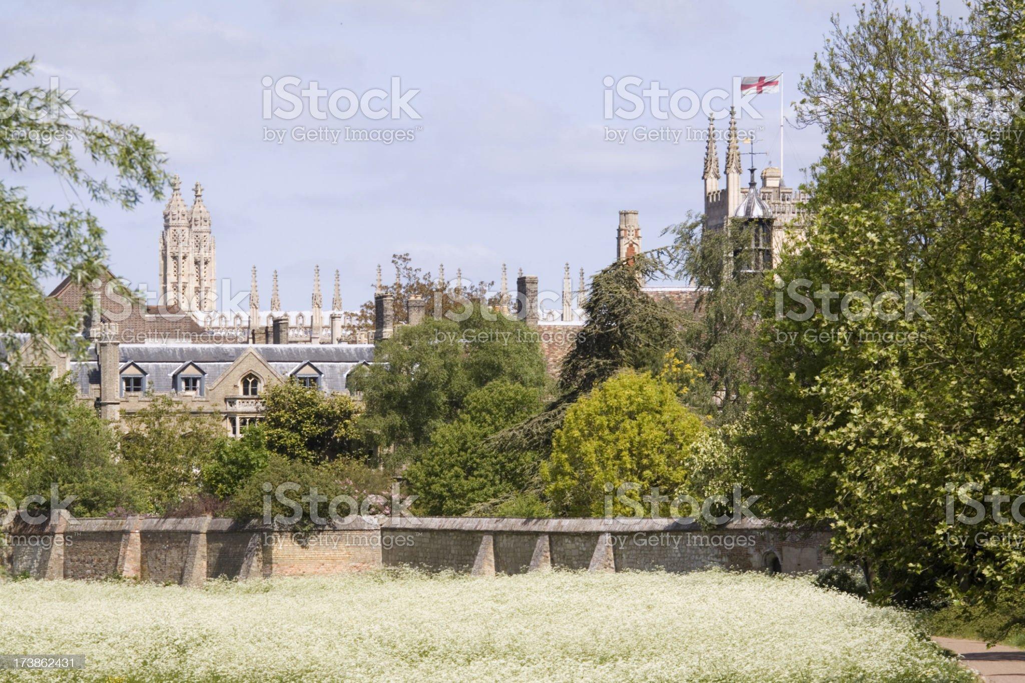 Coe Fen Cambridge royalty-free stock photo