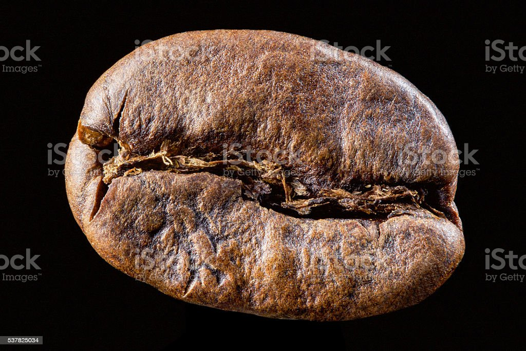 Coffee bean isolated on black background stock photo