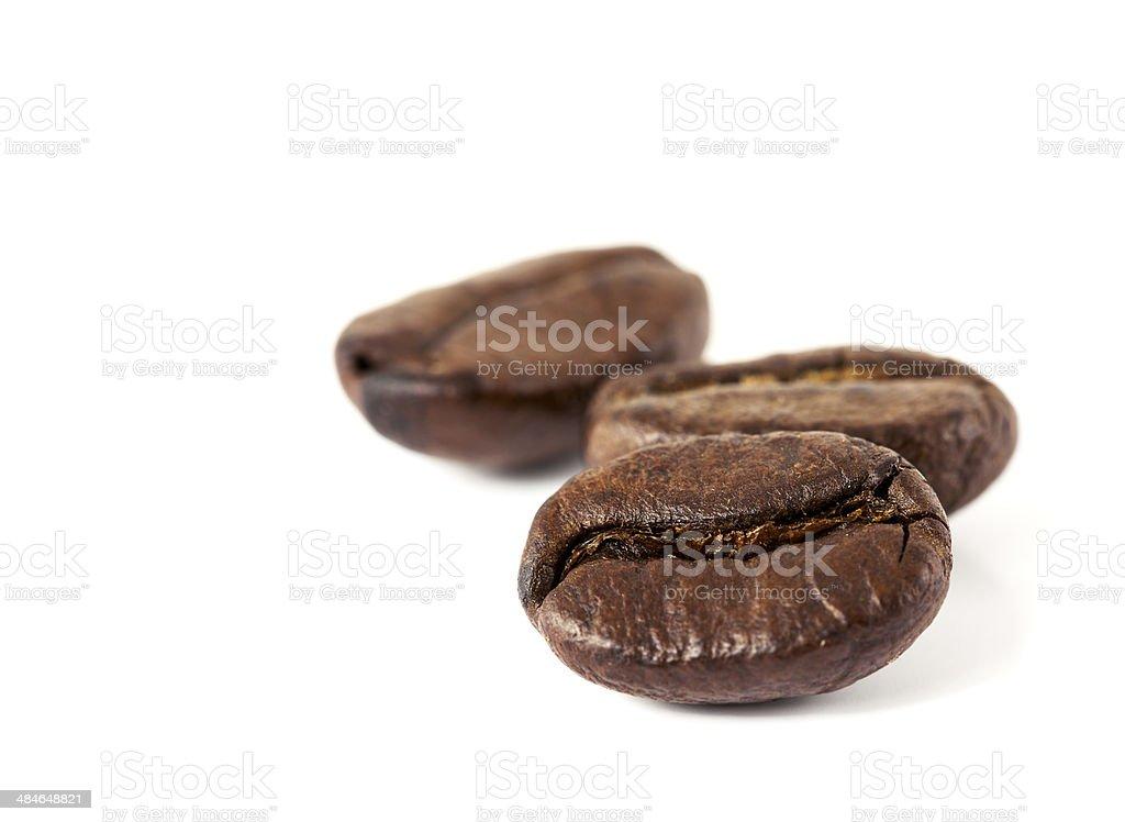 Coffee Bean on a white background stock photo
