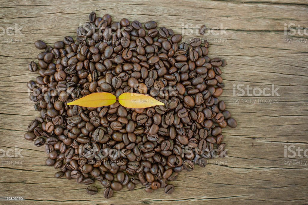 coffee bean on a wooden table and Coffee plant stock photo