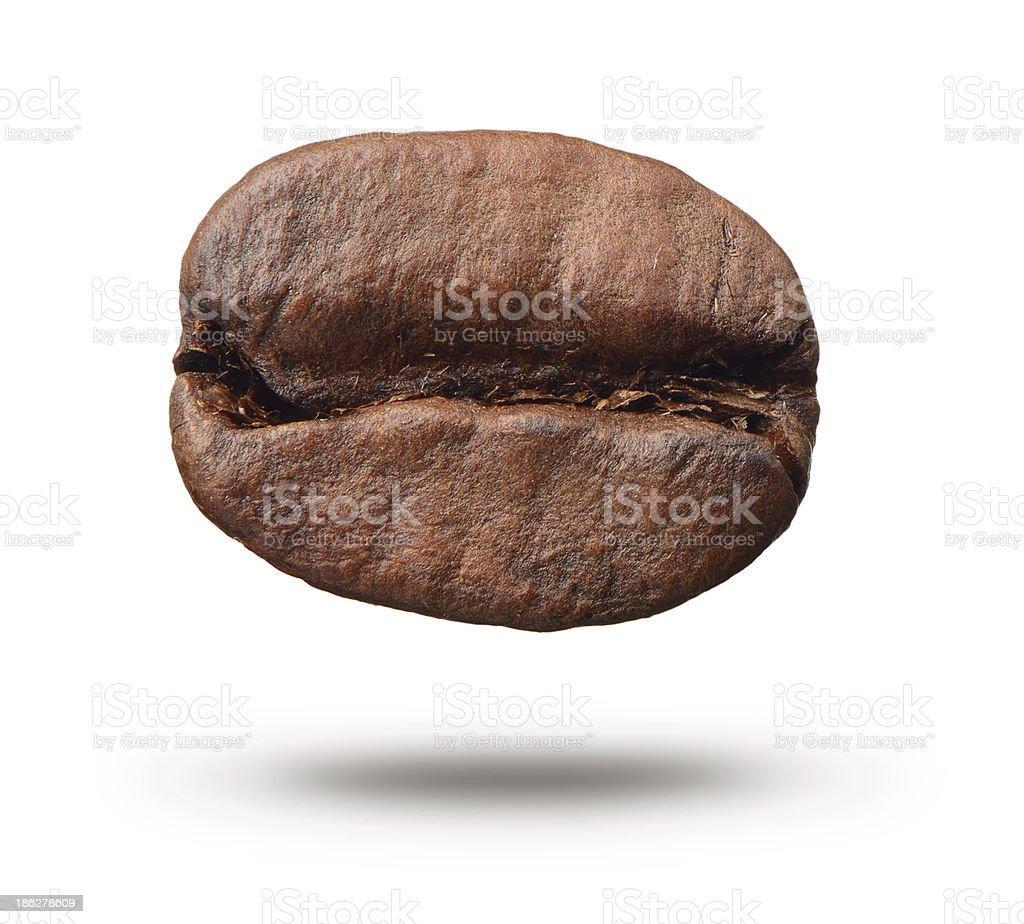 Coffee bean on white background. stock photo