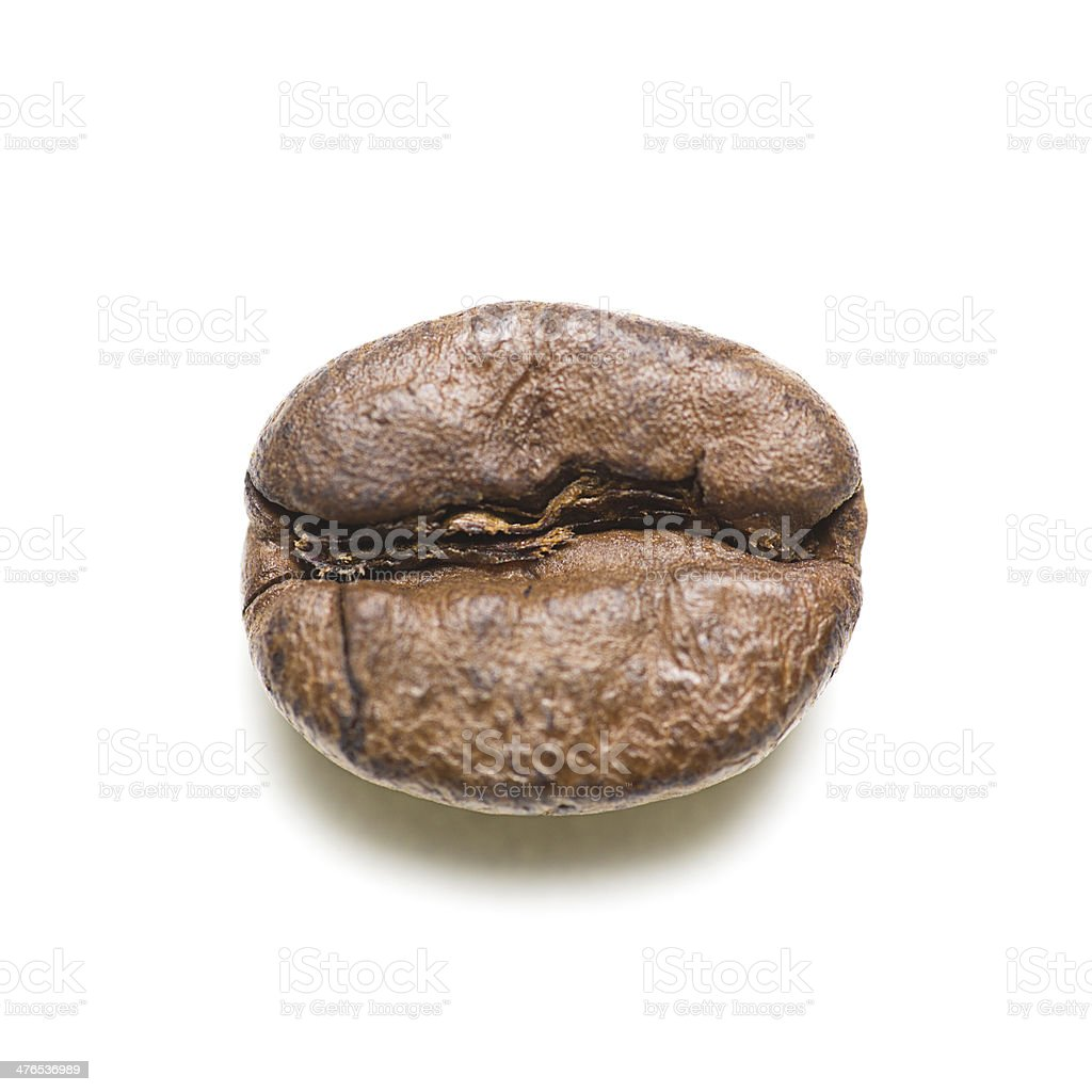 Coffee Bean royalty-free stock photo