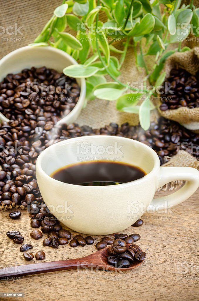 coffee beans and Americano coffee. stock photo