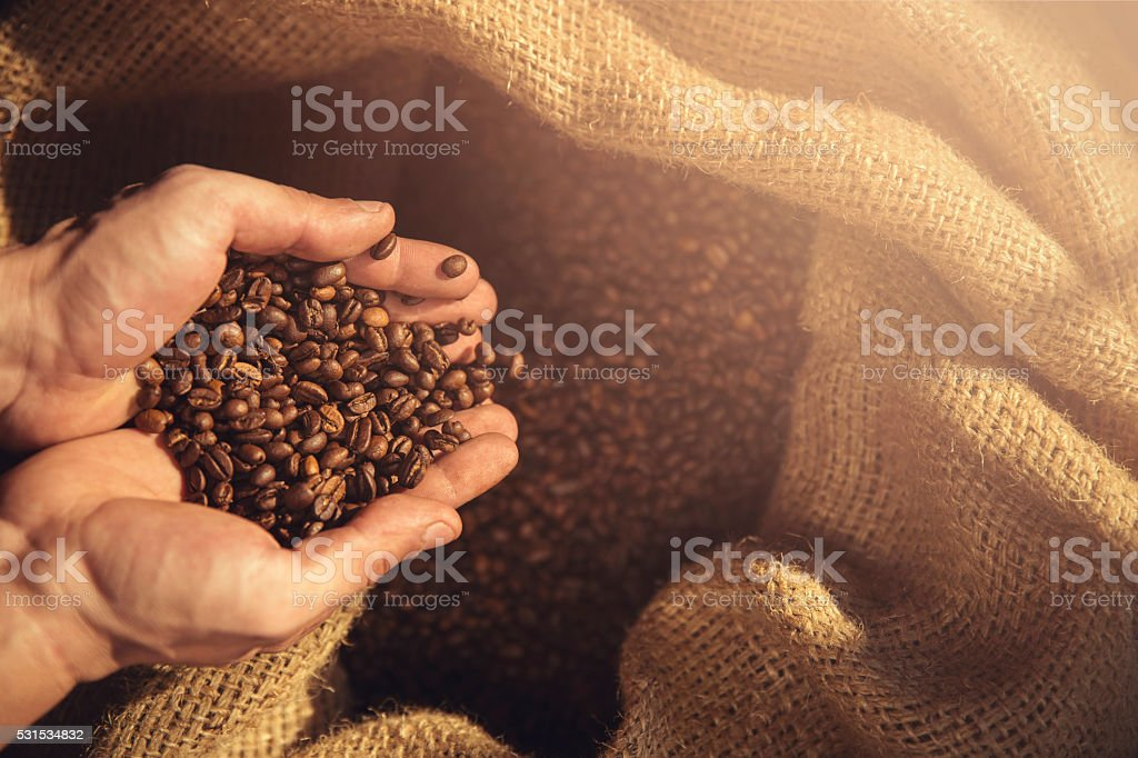 coffee beans and hands stock photo