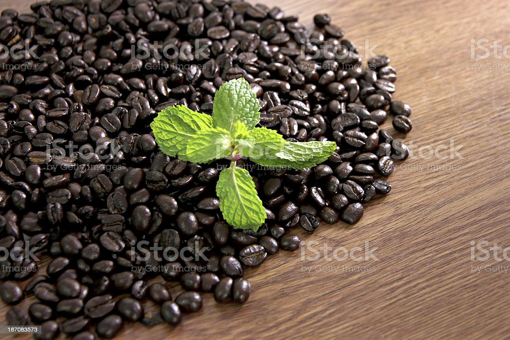 Coffee beans and peppermint green. royalty-free stock photo