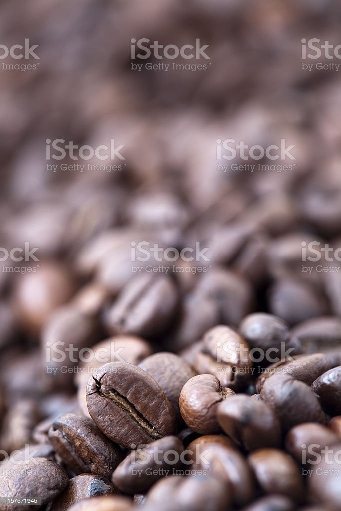 Coffee Beans - Bokeh royalty-free stock photo
