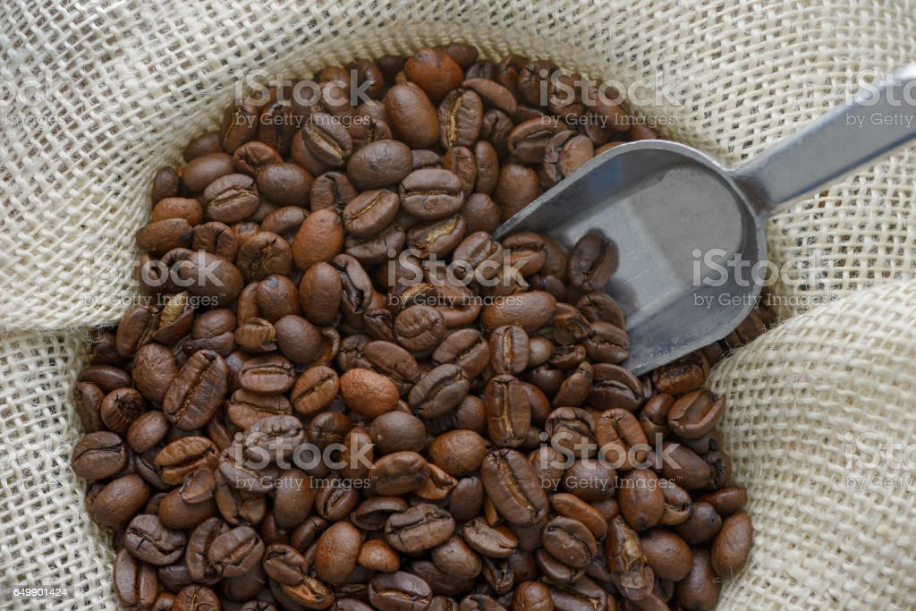 Coffee Beans in a burlap sack with a scoop stock photo