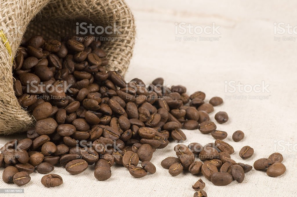 coffee beans in a jute sack royalty-free stock photo