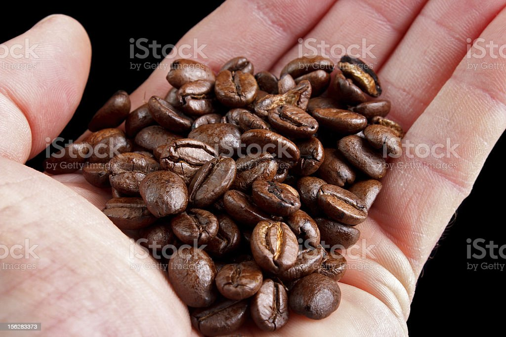 Coffee beans in hand royalty-free stock photo