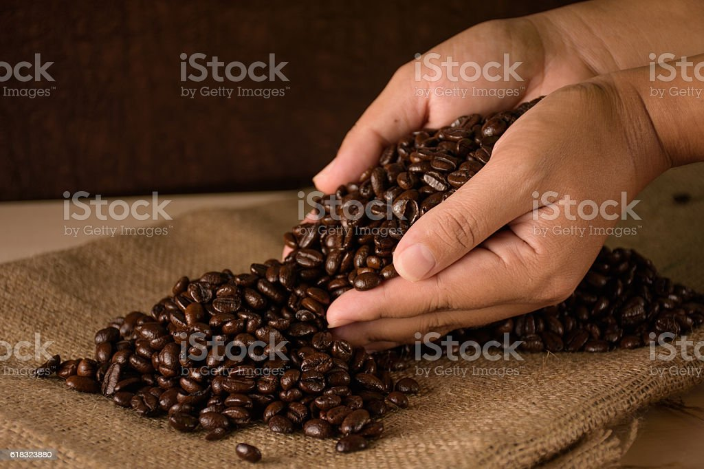 Coffee beans in hands royalty-free stock photo