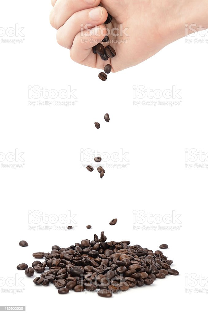 Coffee Beans isolated on white backround royalty-free stock photo