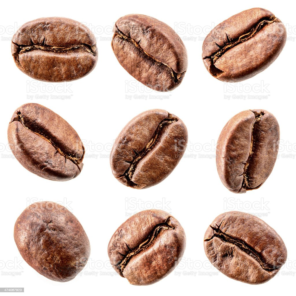 Coffee beans isolated on white. Collection stock photo