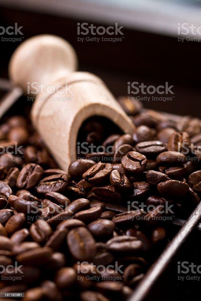 Grãos de Café foto de stock royalty-free